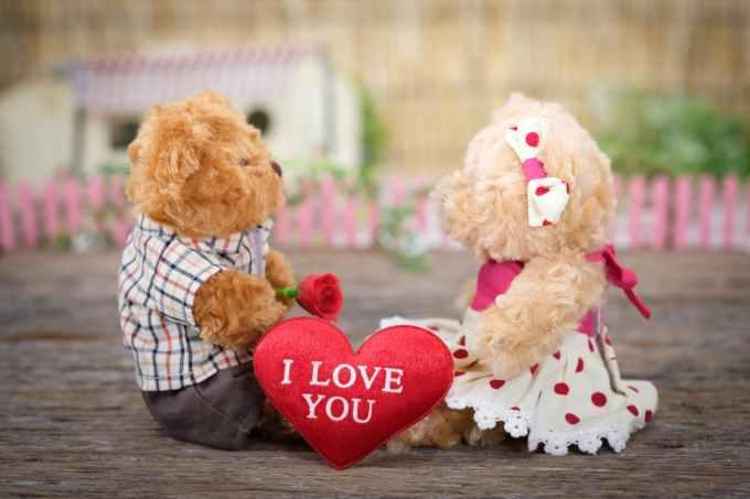 photo of teddy bears sitting on wood